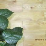 Паркет из лиственницы текстура (3)