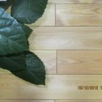 Паркет из лиственницы текстура (4)